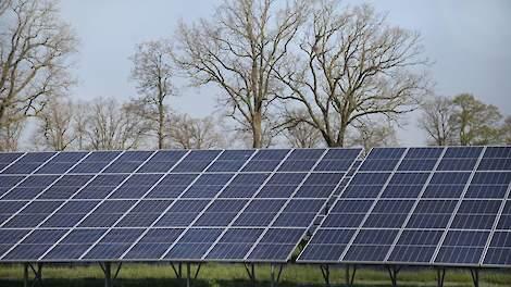 'Gebruik geen kostbare landbouwgrond voor zonnepark Leeuwarden' - Veldpost